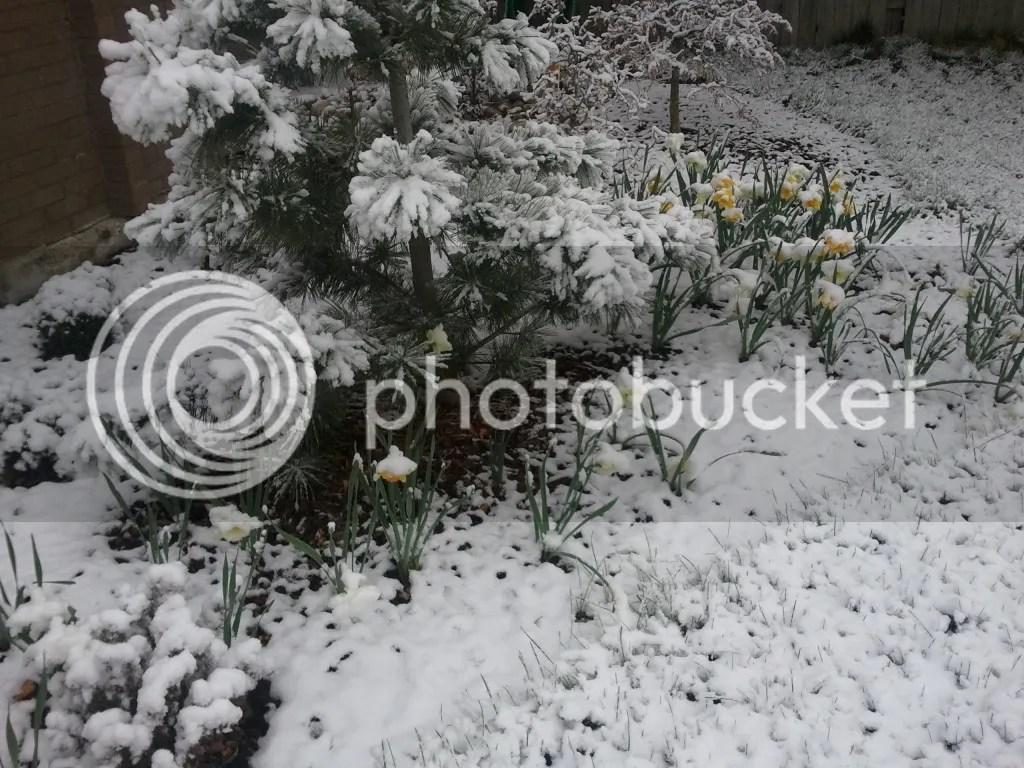 Easter Weekend Snows