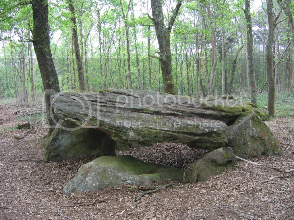 Dolmen in the woods