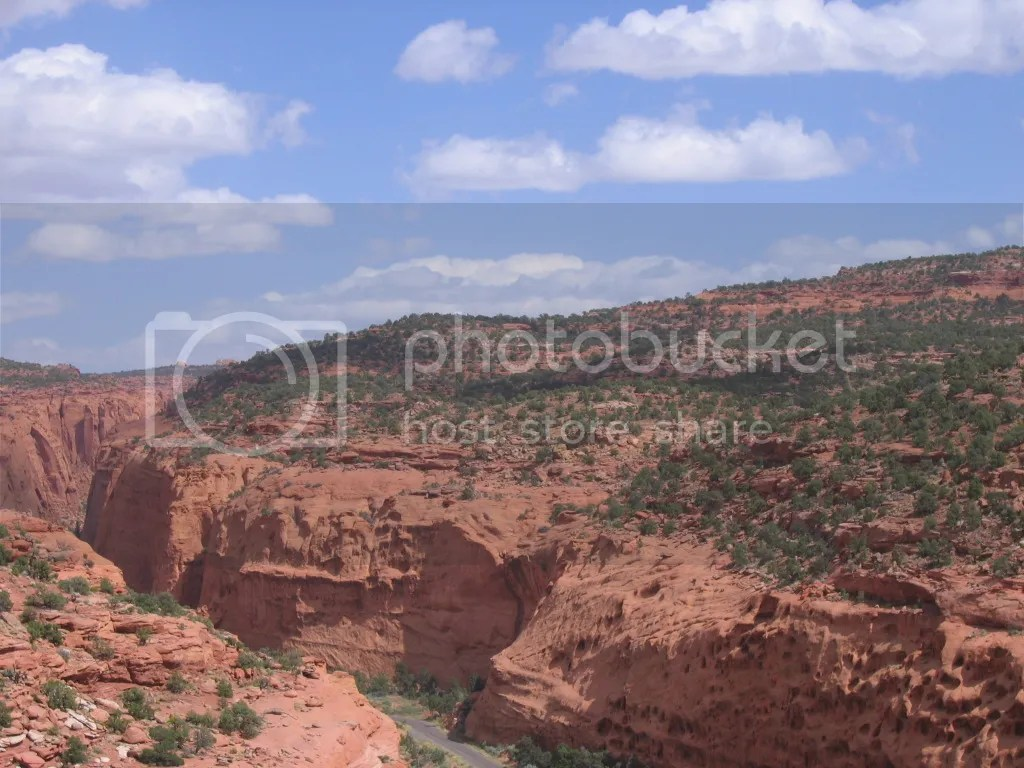 Long Canyon, Burr Trail from above