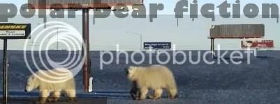 bears running 2