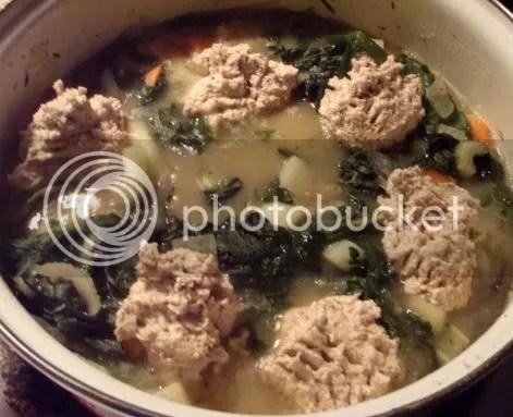veggie stew with dumplings