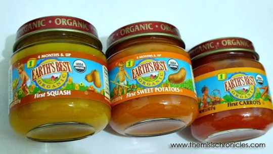 Earth S Best Baby Food Philippines