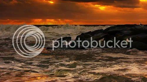 59574829 3d42f46e37 Where We Live: The Jersey Shore Sound