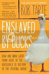 photo 11 enslaved by ducks_zpspe6ky9dc.jpg