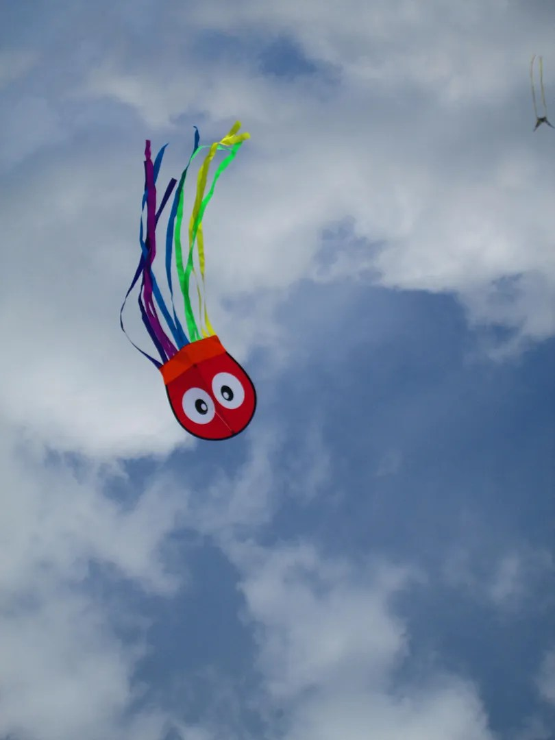 rainbow octopus kite