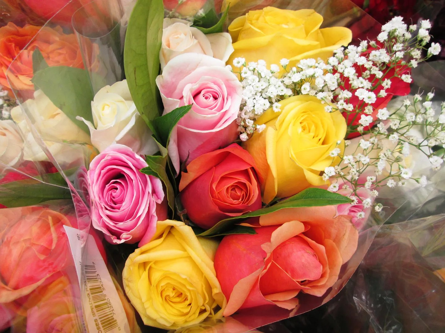 bouquet of pink, orange, and yellow roses with baby's breath