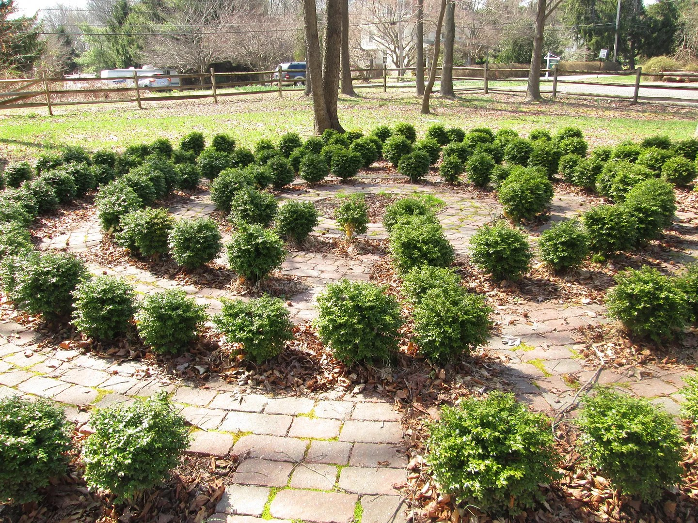 labyrinth with stones and small shrubs