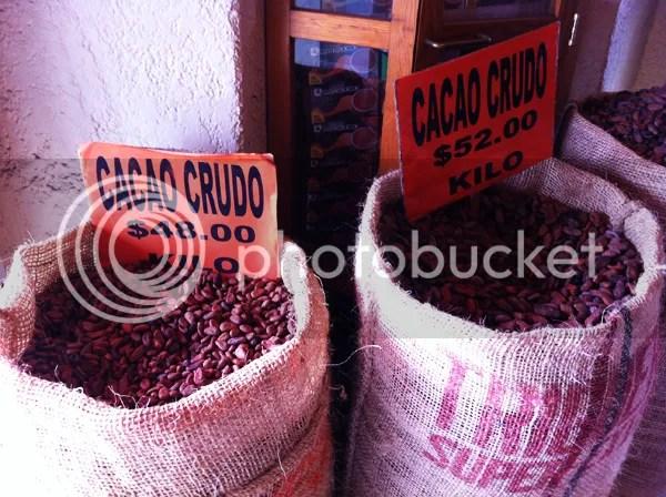 Oaxaca Market Cacao
