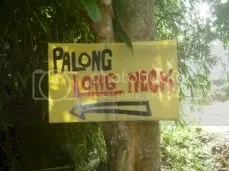 Palong Long Necked.