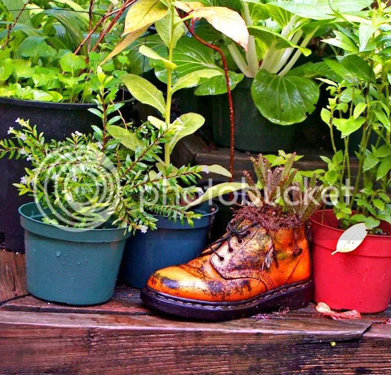Boot,Garden,planter,LongVue House