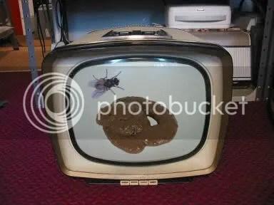 Shit on TV
