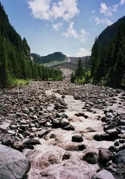 Mt. Rainier, Carbon Glacier Trail (July 2005)
