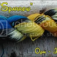 "SILLY SOCKS ~ Papagei ""Sparrow"""