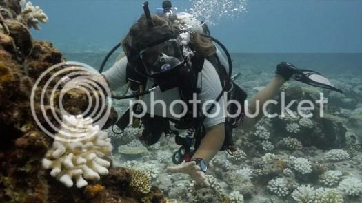 Full Face Mask Technology Communication Ocean Imaging