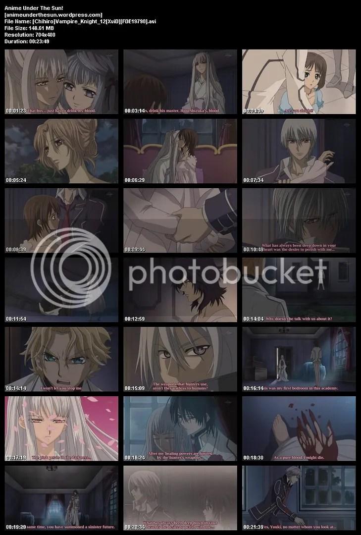 Vampire Knights 12