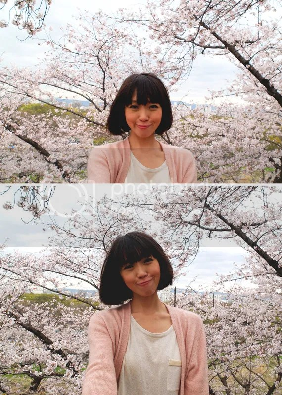 photo bathing in sakura.jpg