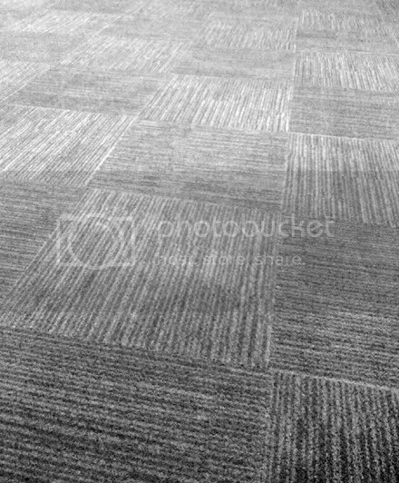 Patterned Flooring