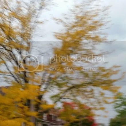Blurry Fall