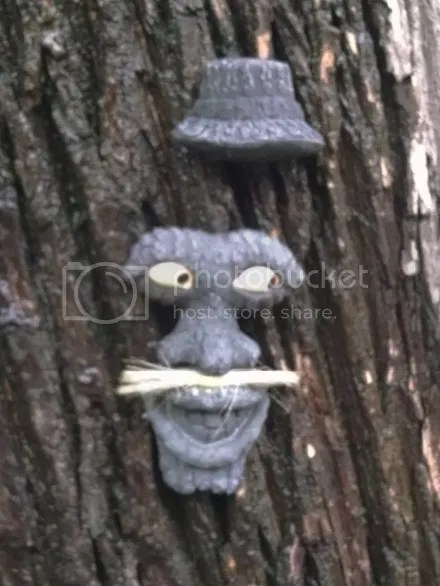 Creep Tree