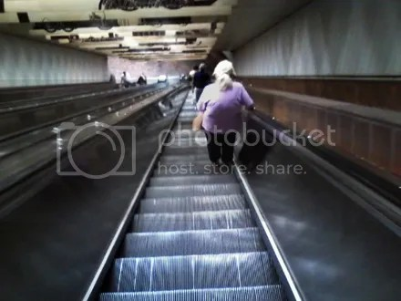 Escalator Forever