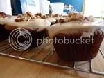 cupcakesm03