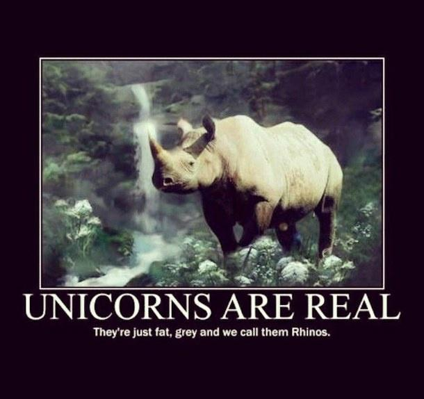 Image result for real unicorns have curves