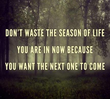 discover season in life