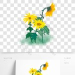 Hand Painted Autumn Plant Leaf Flower Watercolor Gouache Chrysanthemum Commercial Png Images Psd Free Download Pikbest