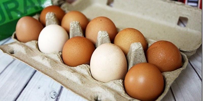 DIY食譜|【達仁牛樟蛋】營養滿分的蛋食譜及沙琪瑪是小朋友的活力來源