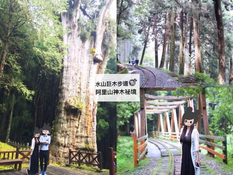 [嘉義景點]水山巨木步道-阿里山森林遊樂區秘境/蜿蜒無盡的鐵路+高聳參天2700年神木 在迷霧森林裡找尋兩千七百年的愛戀