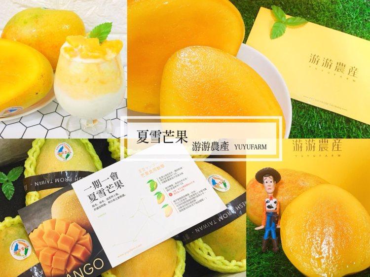 [高雄水果伴手禮推薦]芒果界的LV-夏雪芒果|今夏最夯的芒果皇后 飽滿鮮甜香氣濃郁 |游游農產 精品水果禮盒