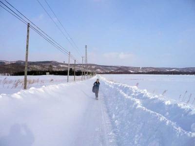 牧草地の雪道を歩く