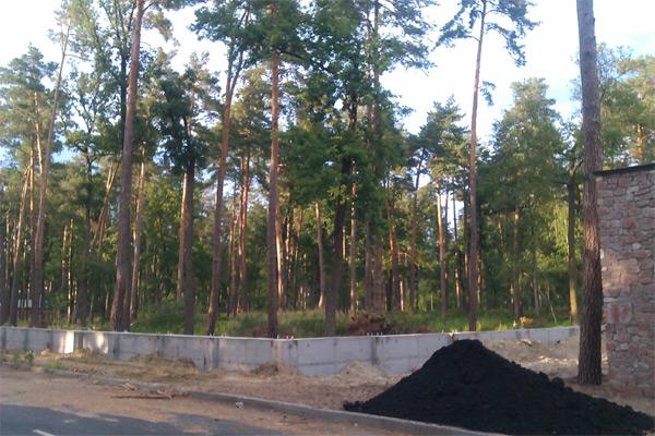 Паркан під лісом для садиби сина Януковича?