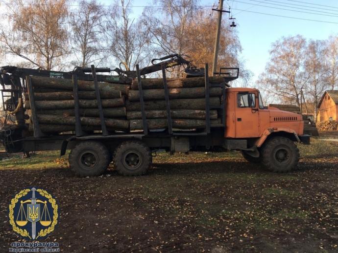Лісництво на Харківщині підозрюють у розтраті на 100 мільйонів