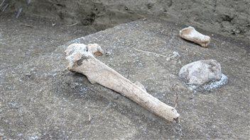 La découverte de cette pierre, au milieu à droite, a incité les archéologues à fouiller cet endroit.