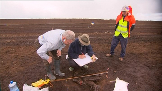 Workers - National Museum and Bord na Móna workers have spent the day working on the remains