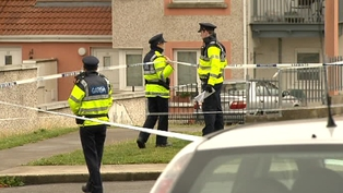 Gardaí have been combing the scene of the crime for evidence