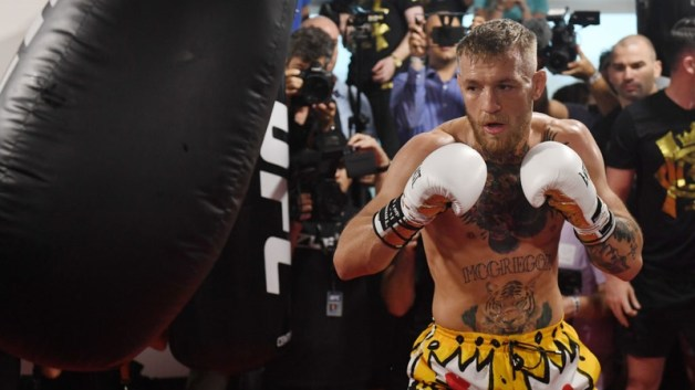 Image result for conor mcgregor in boxing gloves picture
