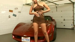 Seductive promoter girl Adriana Russo exposes her pussy on a car hood porn image