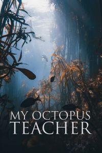 My Octopus Teacher Poster