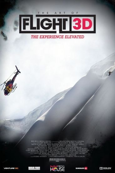 Image result for the art of flight movie poster