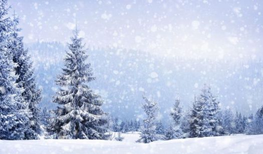 Image result for winter wonderland