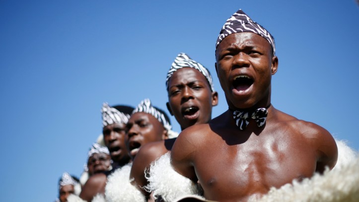 South Africa's Zulu nation joins white farmers in fight against government land seizures