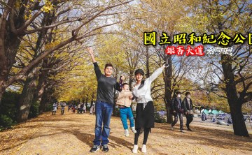 東京親子景點 | 國立昭和紀念公園 超美銀杏大道 還有兒童森林超好玩 (門票/地圖/日本電車轉乘網站推薦)