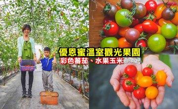 優恩蜜溫室蔬果觀光果園   石岡親子景點 彩色蕃茄 水果玉米 台中親子採果體驗