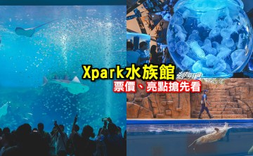 Xpark水族館   桃園景點 8/7開幕,購票、亮點搶先看 海豹魟魚水豚還有「Xcafe」企鵝陪你吃飯 (影片)