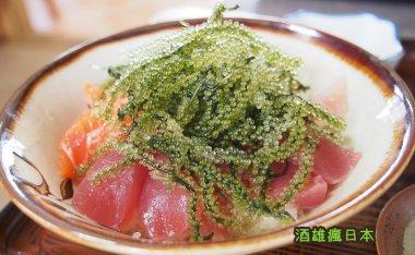 [沖繩美食]古宇利しらさ食堂-CP值超群的海膽丼、海葡萄丼名店