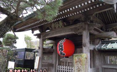 [神奈川]鎌倉花の寺「長谷寺」