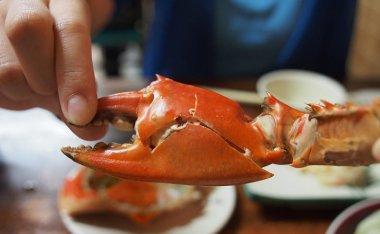 [台中美食]獅兄弟風味小酒館-食尚玩家推薦的平價海鮮料理屋
