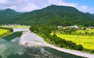 [新潟]向日葵與河階地形、以及超好吃的炸豬排,充滿靜謐美的小鎮『津南町』
